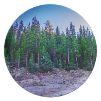 Prato De Festa Floresta & céu do vale de Yosemite
