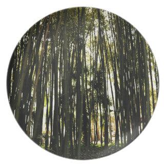 Prato De Festa Floresta de bambu