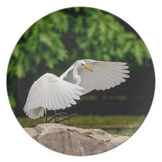 Prato De Festa Grande Egret