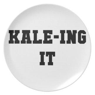 Prato De Festa Kaleing ele