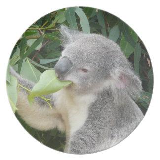 Prato De Festa Koala que come a folha da goma