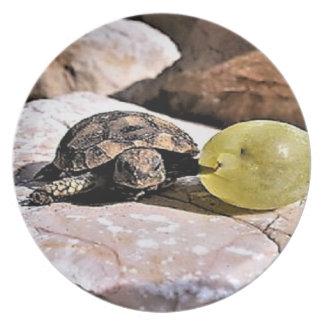 Prato De Festa Minha placa de comensal da tartaruga da uva