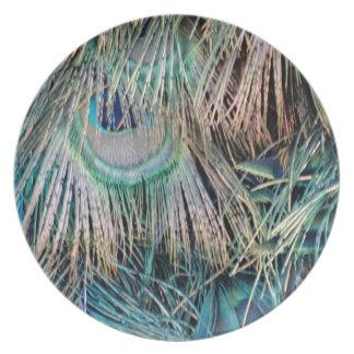 Prato De Festa O pavão empluma-se o verde e o azul de Tan