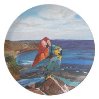 Prato De Festa Pássaros tropicais que negligenciam a baía