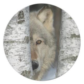 Prato De Festa placa com a foto do lobo cinzento em algumas