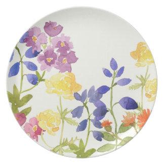 Prato De Festa Placa floral da pintura do Watercolour colorido