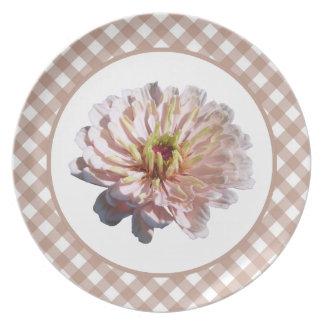 Prato De Festa Placa - o Zinnia cor-de-rosa o mais pálido na
