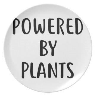 Prato De Festa Psto por plantas