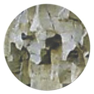 Prato De Festa teto branco áspero da rocha