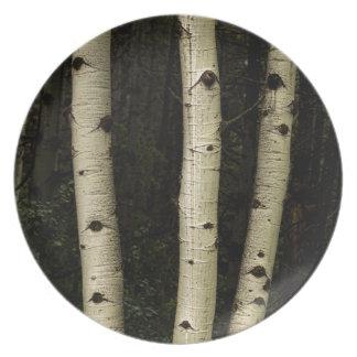 Prato De Festa Três colunas da floresta