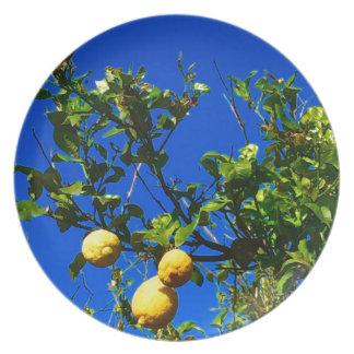Prato De Festa Três limões sicilianos