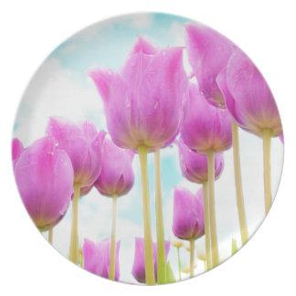 Prato De Festa tulipas