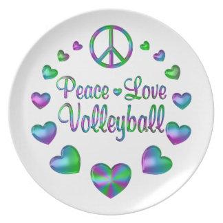 Prato De Festa Voleibol do amor da paz