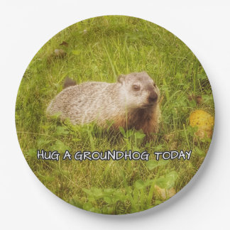 Prato De Papel Abrace placas de um groundhog hoje