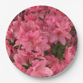 Prato De Papel Arbusto de florescência cor-de-rosa brilhante na