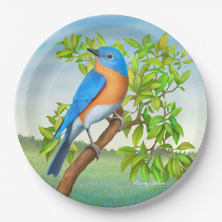 Prato De Papel Bluebird oriental nas placas de papel da árvore