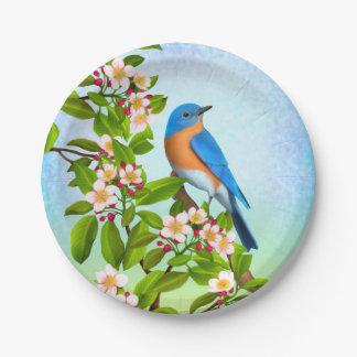 Prato De Papel Bluebird oriental nas placas de papel das flores