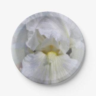 Prato De Papel Branco nas placas brancas da flor da íris