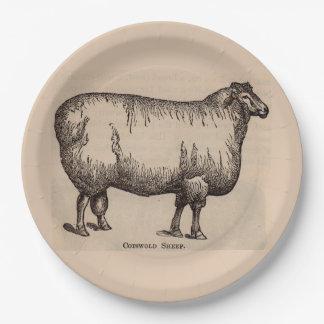 Prato De Papel Carneiros do século XIX de Cotswold do impressão