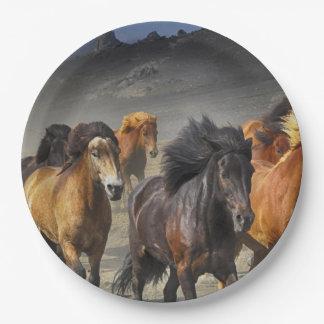 Prato De Papel Cavalos selvagens