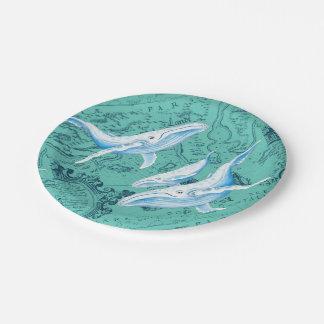 Prato De Papel Cerceta da família das baleias azuis