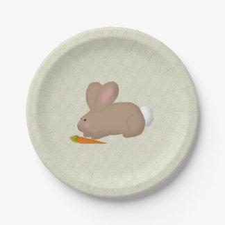 Prato De Papel Coelho com as placas de papel da cenoura
