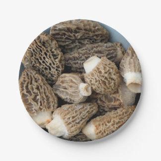 Prato De Papel Cogumelos do Morel