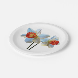 Prato De Papel Dois brancos e Daffodils alaranjados