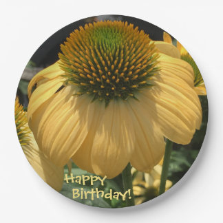 Prato De Papel Echinacea do feliz aniversario