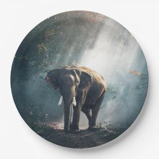 Prato De Papel Elefante asiático em um esclarecimento Sunlit da