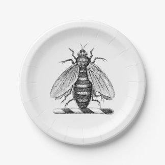Prato De Papel Emblema heráldico formal da brasão da abelha do