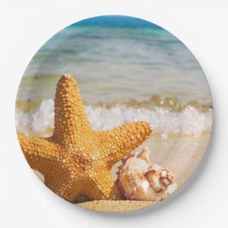 Prato De Papel Estrela do mar e Seashells na praia
