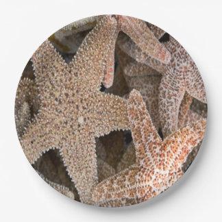 Prato De Papel Estrela do mar toda ao redor