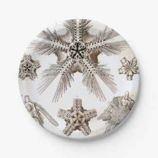 Prato De Papel Estrelas frágeis de Ernst Haeckel Ophiodea