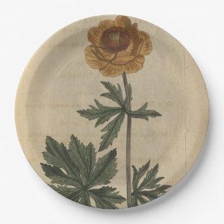 Prato De Papel Flor de globo