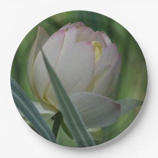 Prato De Papel Flor de Lotus