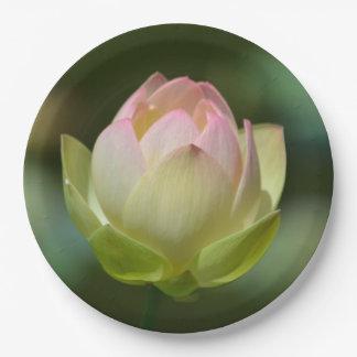Prato De Papel Flor sonhadora de Lotus