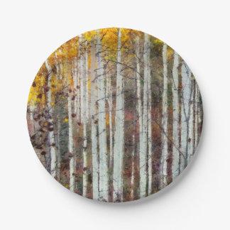 Prato De Papel Floresta enevoada do vidoeiro