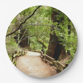 Prato De Papel Fotografia da natureza do trajeto II das madeiras