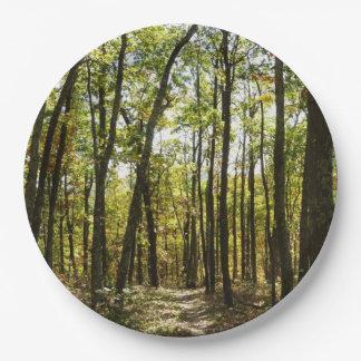 Prato De Papel Fuga apalaches em outubro em Shenandoah
