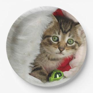 Prato De Papel Gato do Natal - gato do gatinho - gatos bonitos
