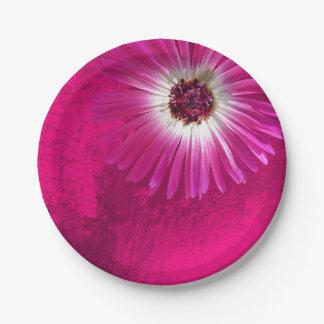 Prato De Papel Gerbera Amethyst roxo da flor do rosa do rosa