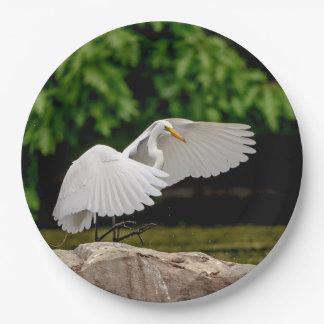 Prato De Papel Grande Egret