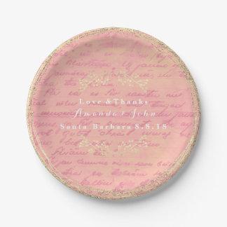 Prato De Papel Grinalda Salmon do vintage do rosa cor-de-rosa do