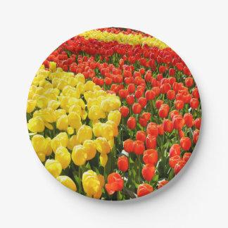 Prato De Papel Jardim da tulipa