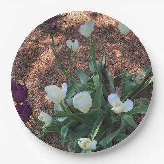 Prato De Papel Jardim das flores brancas da tulipa da neve