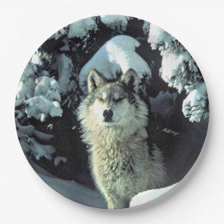 Prato De Papel Lobo na neve