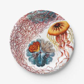 Prato De Papel Medusa de Ernst Haeckel Discomedusae