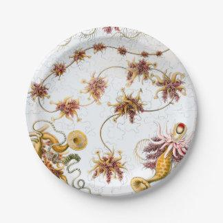 Prato De Papel Medusa de Ernst Haeckel Siphonophorae