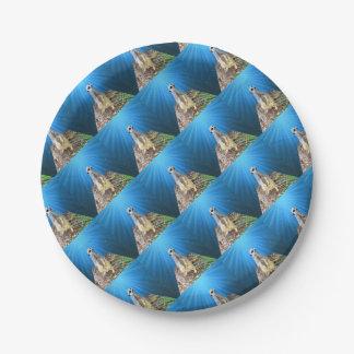Prato De Papel Noite azul de Meerkat, _